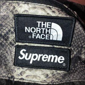 Supreme north face snakeskin backpack